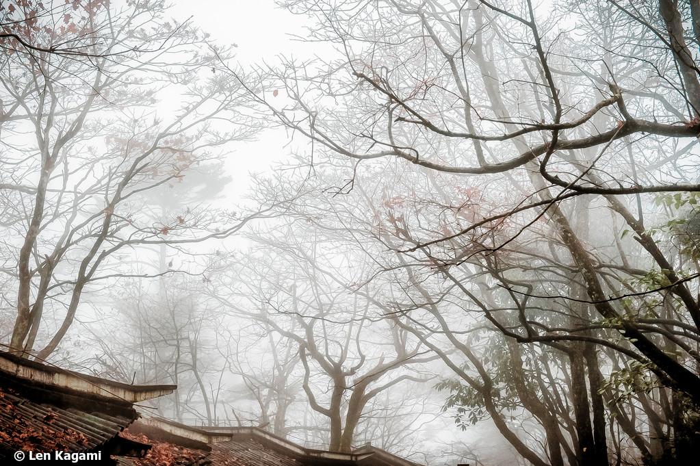 Sichuan 5