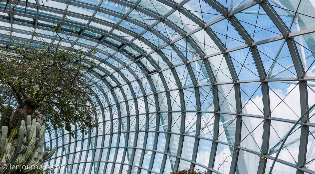 The glass roof of Flower Dome