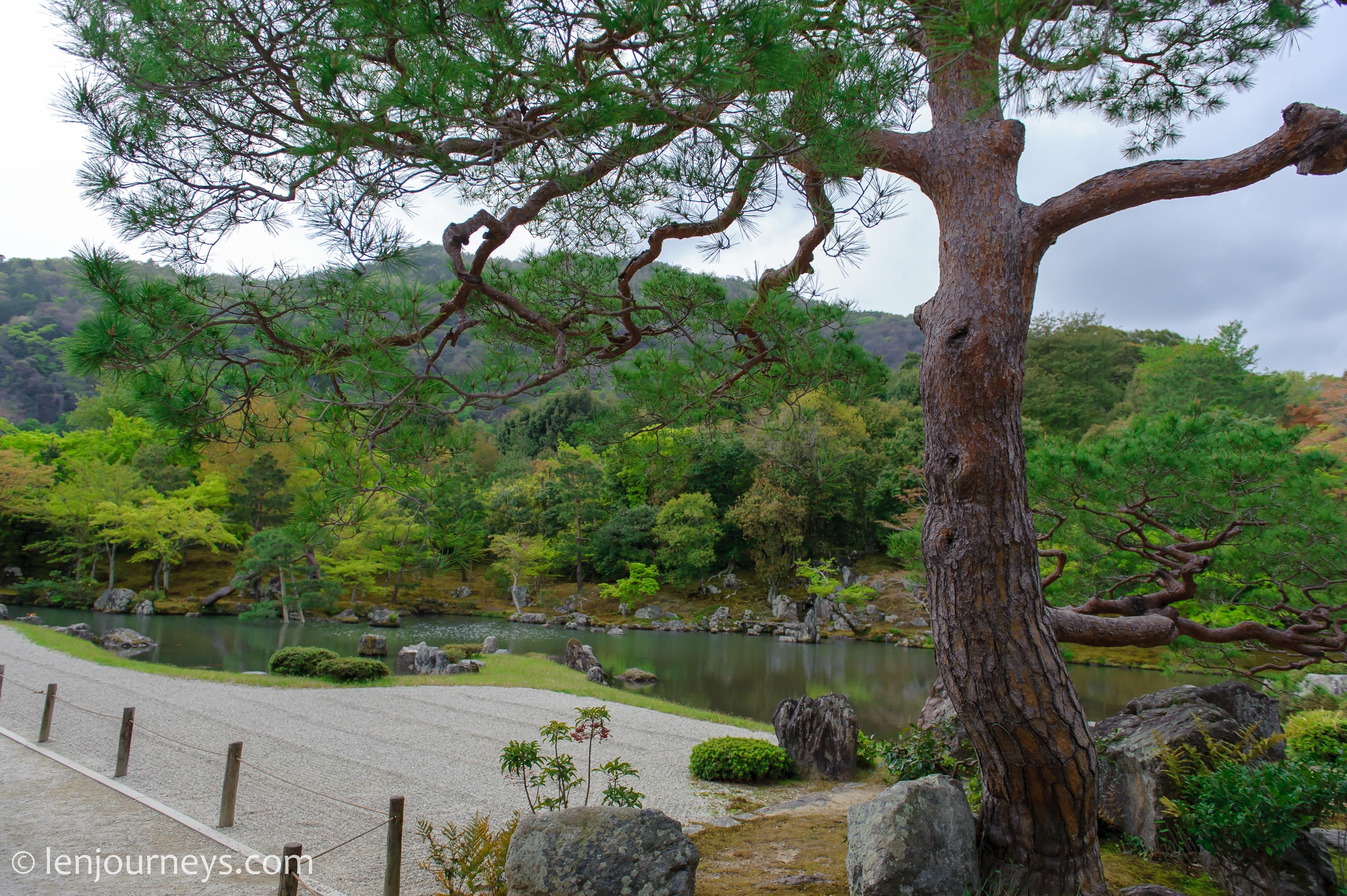 Tenryuji Zen Garden