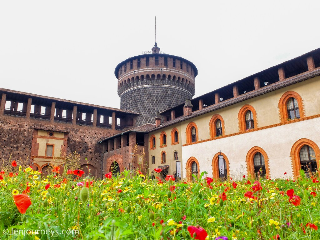 Flowers in the Sforzesco Castle